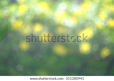 Blur image of nature for background