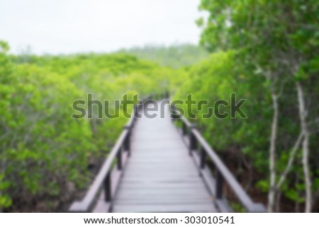 Blur mangrove forest with wood bridge walk way for background texture - stock photo