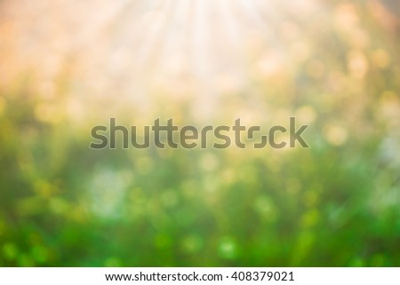 blur Natural flower outdoors bokeh background in green and yellow tones with sun rays - stock photo