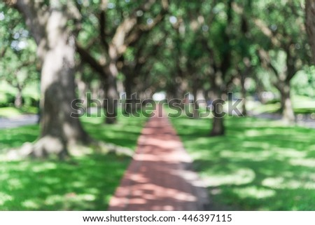 Blur oaks tree tunnel with bokeh. Romantic archway made from live oak trees, green grass and rustic brick path leads to infinity. Urban tranquil scene abstract background. - stock photo