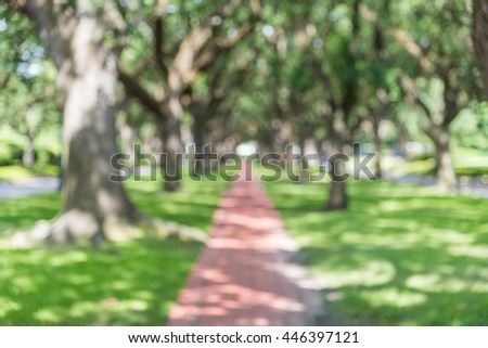 Blur oaks tree tunnel with bokeh. Romantic archway made from live oak trees, green grass and rustic brick path leads to infinity. Urban tranquil scene abstract background. Vintage filter look. - stock photo