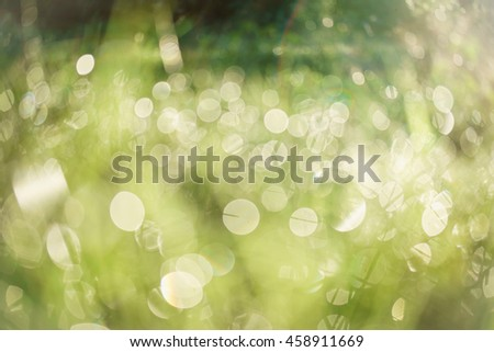 Blur of drops on grass