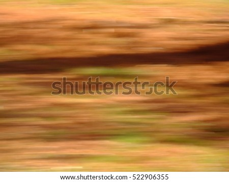 Blur of natural leaf colors in the Fall, specifically, oranges, reds, greens and yellows.  Suitable for background or abstract.