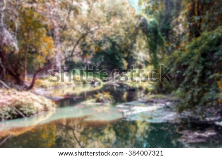 blur pond and rain forest in autumn - stock photo