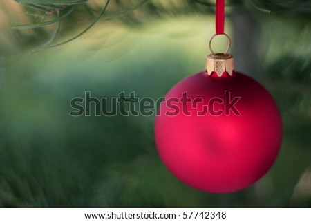 Blur red glass ball and Christmas evergreen tree - stock photo
