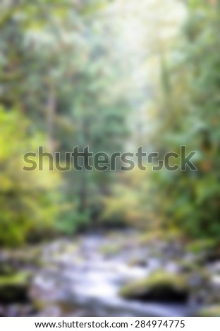 blur view of creek in the wood for background  - stock photo