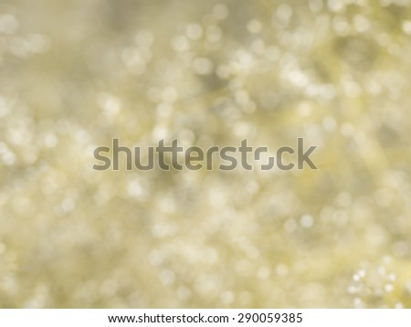 BLURED yellow grass background with white flower - stock photo
