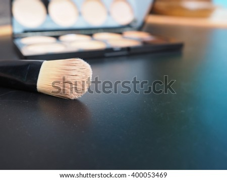 blurred a professional makeup palette - concealers with blush