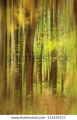 blurred autumn forest landscape - stock photo