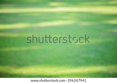Blurred background : green grass blur background. beautiful pattern of fresh green grass for football sport, football field, soccer field, team sport texture. - stock photo