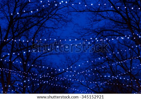 Blurred background of abstract tree trunk silhouettes illuminated by holiday garlands - stock photo