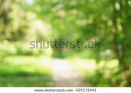 blurred background of green park in summer, very high resolution - stock photo