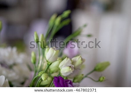 Flores de invierno de Tyson Propiedades en Albuquerque y Rio Rancho NM