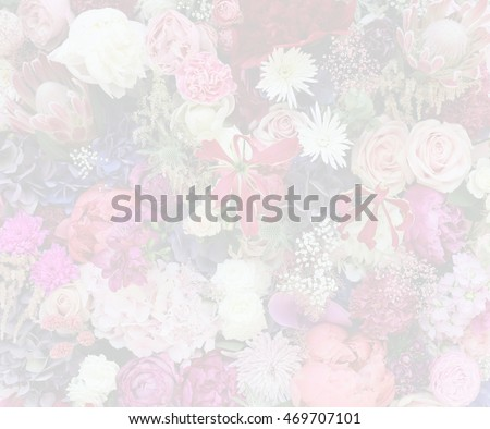 Blurred background with flowers of various shades of pink