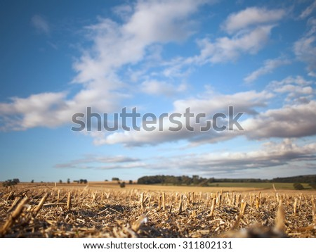 Blurred Clouds over Harvested Rapeseed Field, Shallow DOF - stock photo