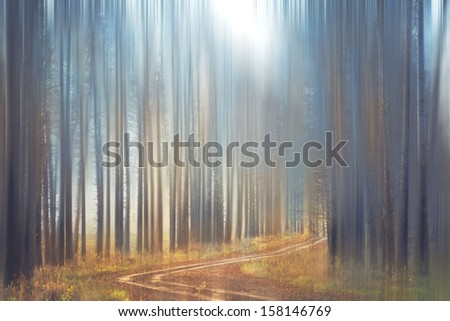 blurred forest park in the autumn mist - stock photo