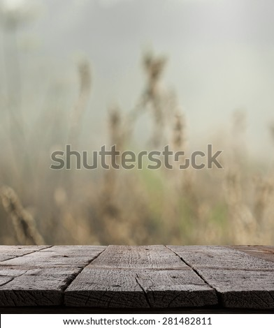 Blurred forest with wood table. grass meadow and forest landscape with green plants - stock photo