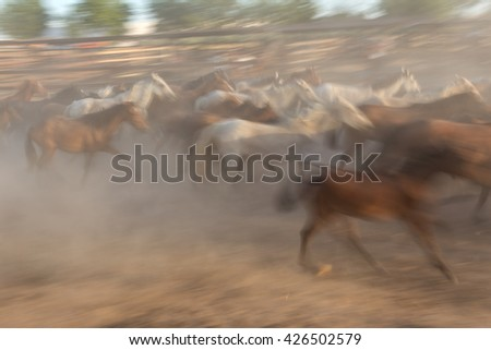 Blurred image of a herd of horses in motion. Guides in the stall.