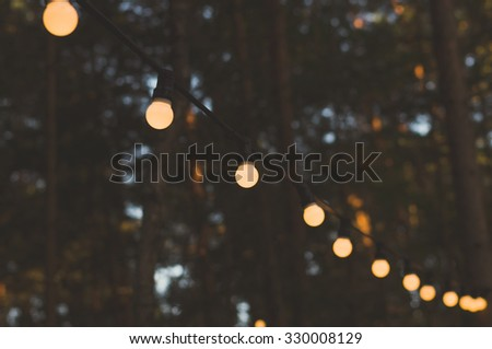 Blurred image of light bulbs outdoor on a wire against dusk forest, holiday concept - stock photo