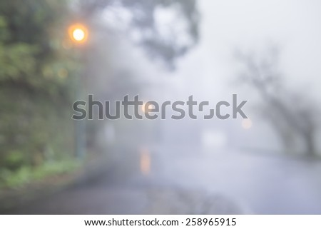 Blurred light and tree in foggy raining day, mist. - stock photo