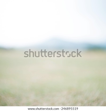 Blurred nature background - stock photo