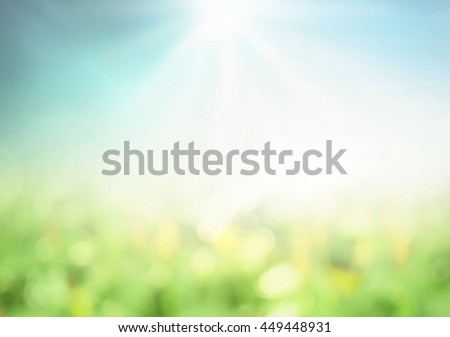 Blurred Nature. Bokeh, View, Soft, Grass, Art, Farm, Land, Light, Fresh, Lawn, Flora, Place, Color, Bright, Design, CSR, Peace, City, Sunny, Zen, Spa, Season, White, Foliage, Earth, Heaven, Branch. - stock photo