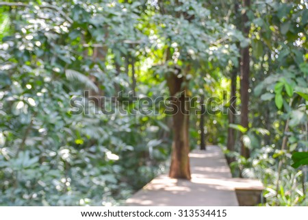 Blurred of nature outdoor bokeh background