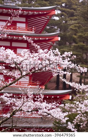 blurred photo of a Japanese atmosphere with cherry blossoms and a temple, cherry blossoms scenery, cherry blossoms Japan, pink cherry blossoms, travel Japan for Cherry Blossoms - stock photo