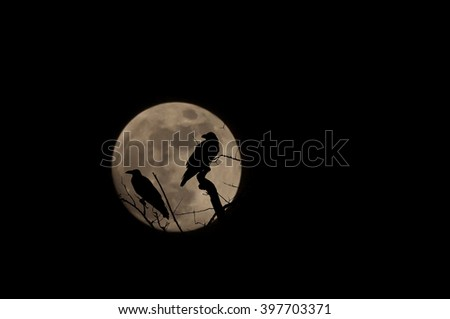 blurred silhouette of crows and tree with the moon