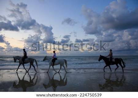 Blurred silhouettes of horses and riders on Baltic Sea coast after sunset - stock photo