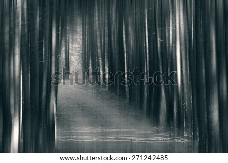 Blurred spooky woods in black and white  - stock photo
