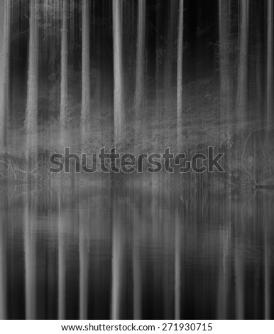 Blurred spooky woods near lake in black and white  - stock photo