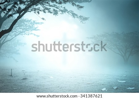 Blurred the cross over blurred night forrest background. Christmas background, Worship, Forgiveness, Mercy, Humble, Repentance, Reconcile, Adoration, Glorify, Peace concept. - stock photo