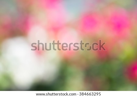 Blurred vivid sweet bright background of nature,abstract bright color. - stock photo