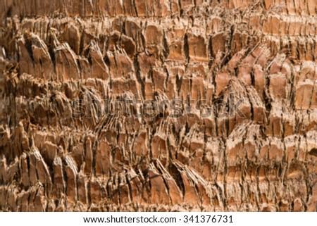 Blurry palm tree bark texture - stock photo