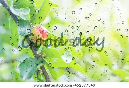 blurry photo of Red Barbados cherry on its tree with raindrops on glass window with good day - stock photo