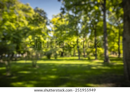 Blurry View of a Forest Park Landscape - stock photo