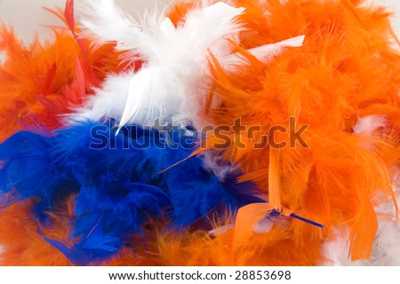 boa for dutch holiday called queensday on white