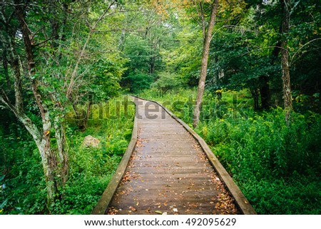 Boardwalk path along the Limberlost Trail in Shenandoah National Park, Virginia.