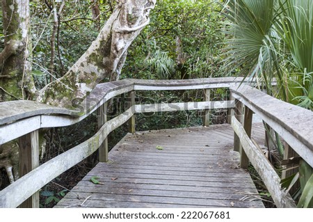 Boardwalk through the wetlands of Everglades National Park, Florida, USA - stock photo
