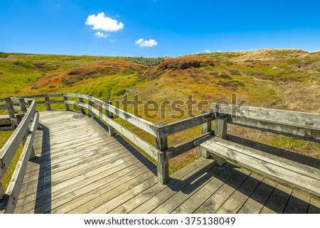 Boardwalks in Phillip Island Nature Park in summer, The Nobbies, Grant Point, western tip of Phillip Island, Victoria, Australia - stock photo