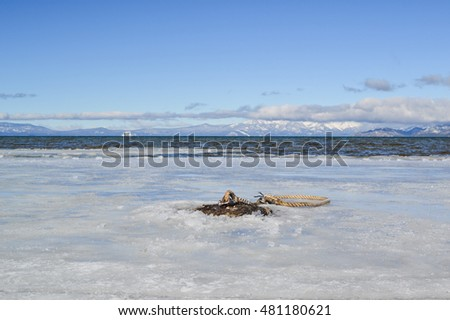 Boat anchor at frozen waters of lake tahoe in the winter.