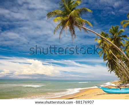 boat and coconut palm tree on tropical coast - stock photo