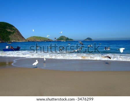 Boat and seagulls in Itaipu Beach, Rio de Janeiro, Brazil - stock photo