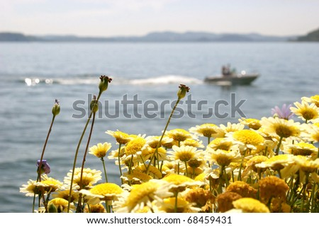 Boat at Lago Maggiore (Italy) with flowers in the foreground - stock photo