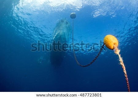 boat chain and yellow buoy anchor from underwater