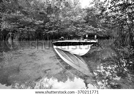 boat floating at the river surround by mangrove tree in black and white