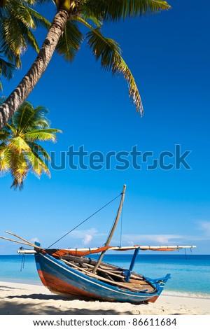 Boat on the coast. Palm. Skyline. - stock photo