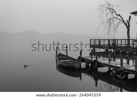 Boat on the lake on a foggy day. A duck is swimming near the boat. There is a tree on the right side. In the background there are some hills. Torre del Lago, Tuscany, Italy