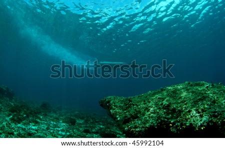 boat trail from underwater view at Hukurila island, Ambon, Indonesia - stock photo